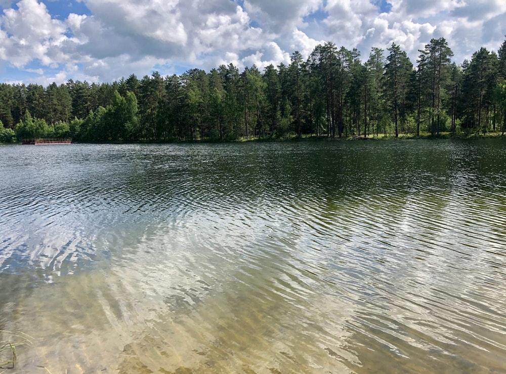 Озеро Светлое у поселка Будогощь Ленинградская область