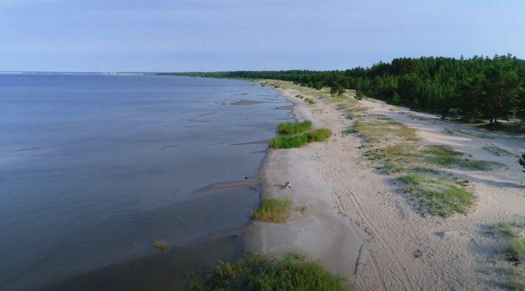 Выбье пляж Кингисеппский район Ленинградская область