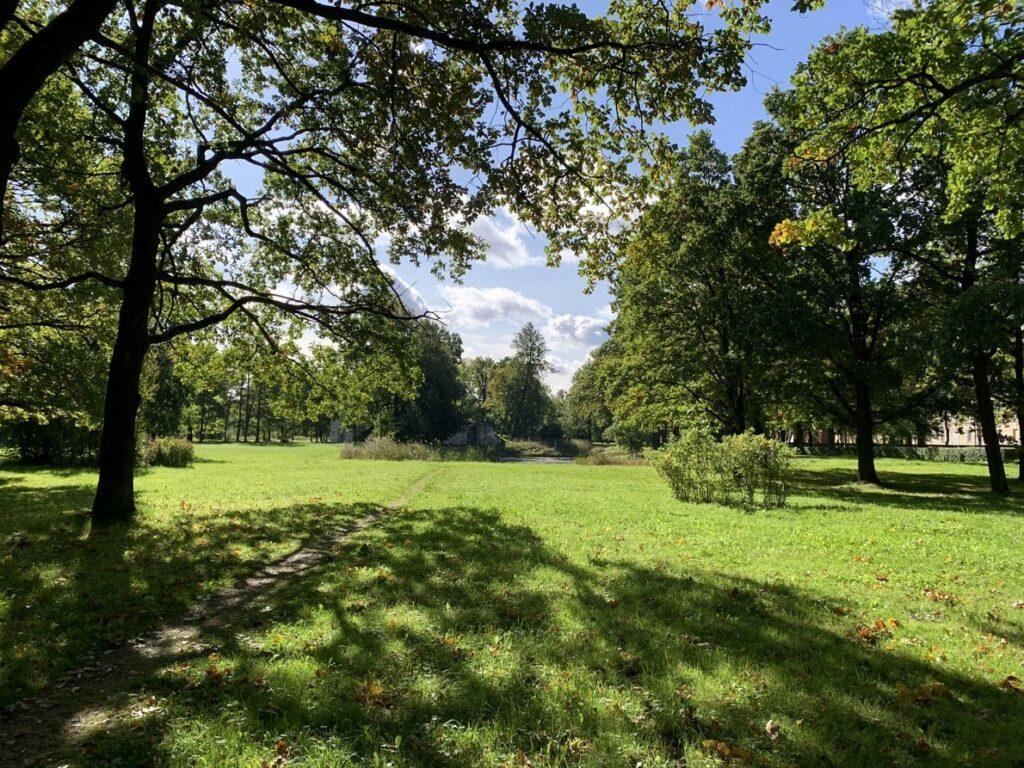 Место где был Лабиринт в Орловском парке