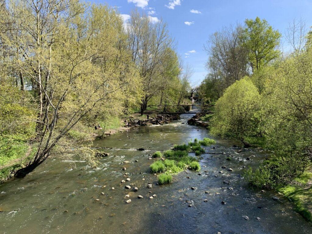 Орловский парк в Стрельне