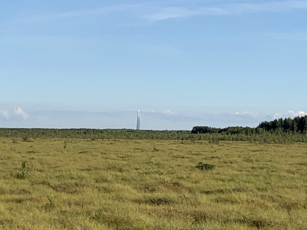 Вид на Газпром башню от Сестрорецкого болота