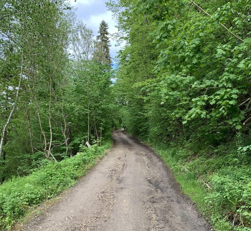 дорога к Лопухинке на автобусе