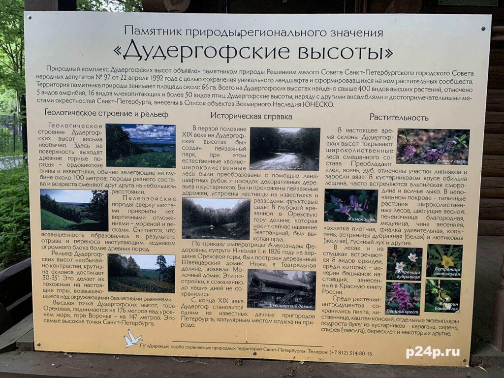 Дудергофские высоты, как образовались, флора и фауна