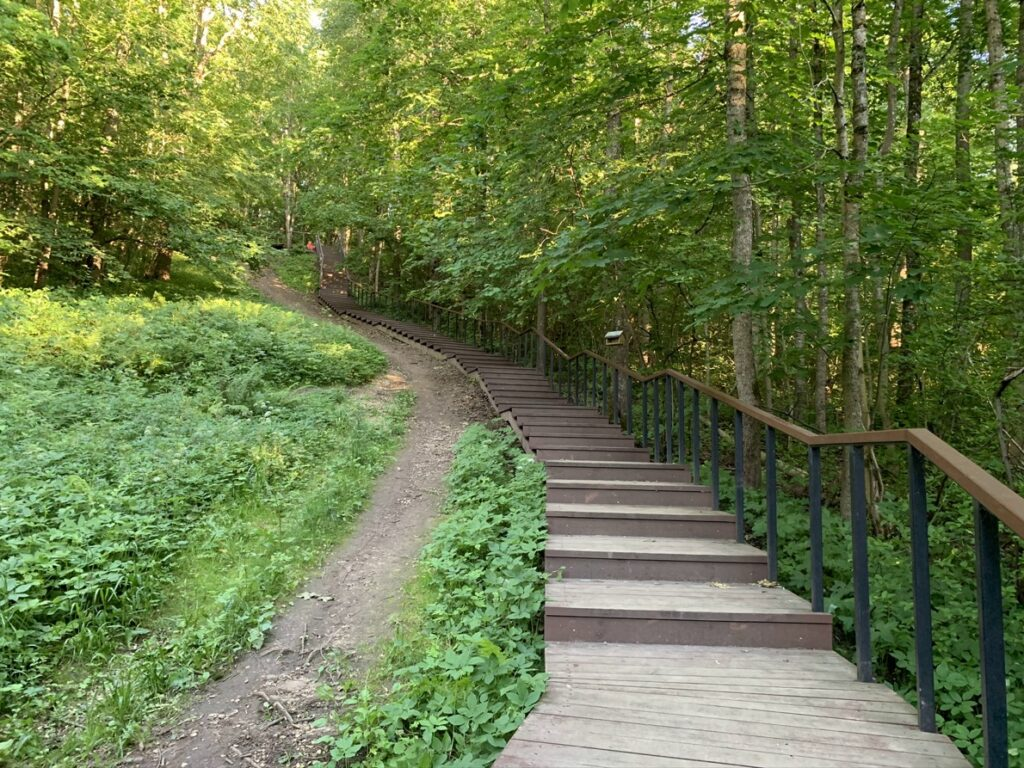 Деревянная лестница к роднику на Ореховой горе, Дудергофские высоты