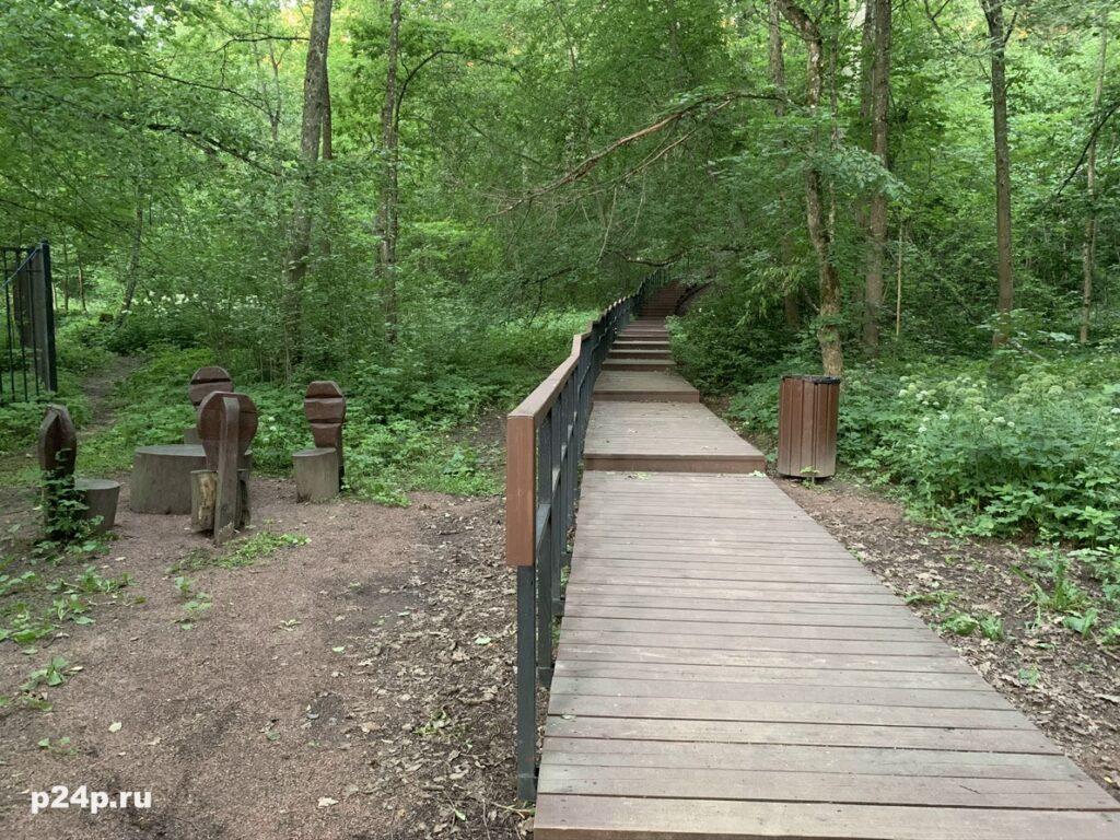 Деревянные настилы по экотропе Дудергофских высот
