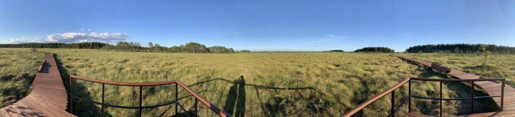 Смотровая площадка Сестрорецкое болото