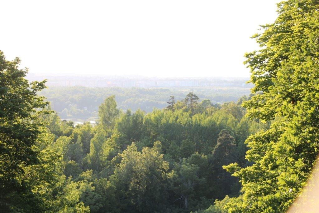 Смотровая площадка на Ореховой горе Дудерофские высоты