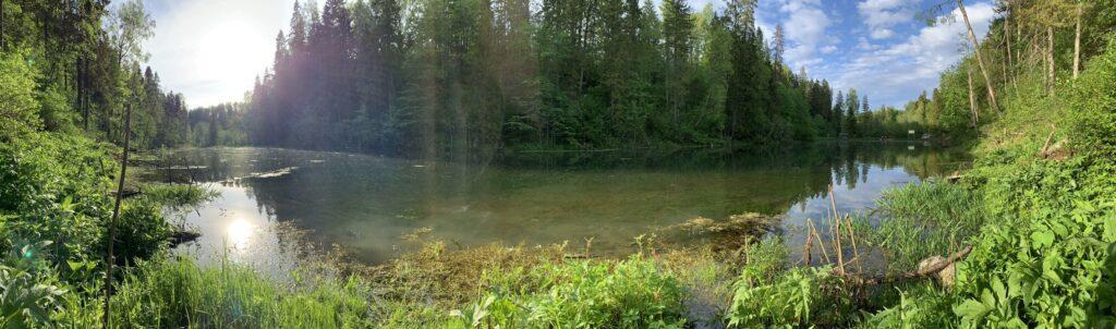 Среднее озеро в Лопухинке
