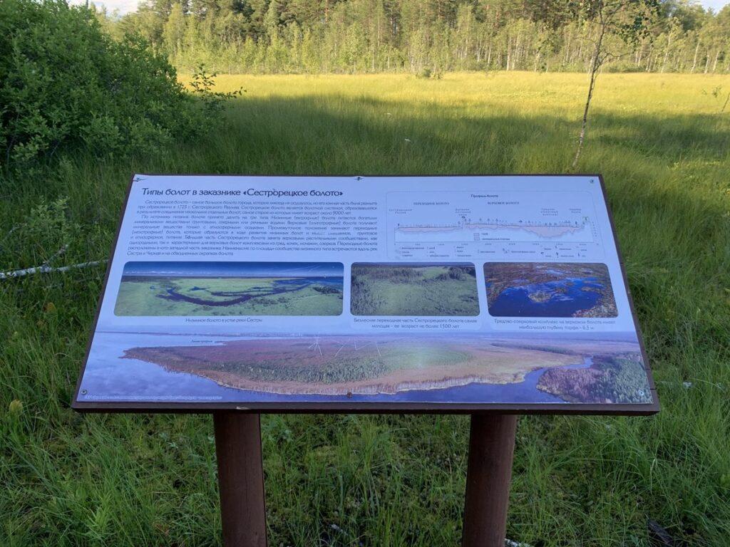 Инфостенд о типах болот в заказнике Сестрорецкое болото
