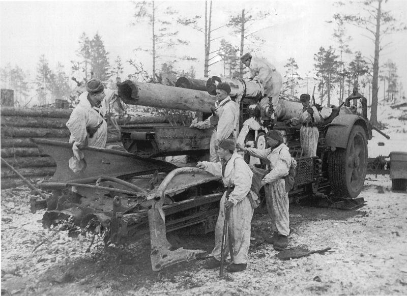 Советские бойцы на освобожденных  Дудергофских высотах. немецкаю 210-мм пушку