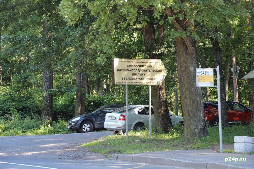 Парковка в Сергиевке