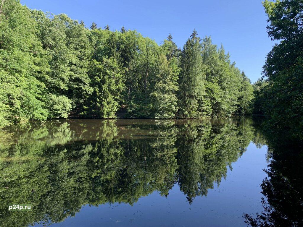 Парк Сергиевка овраги